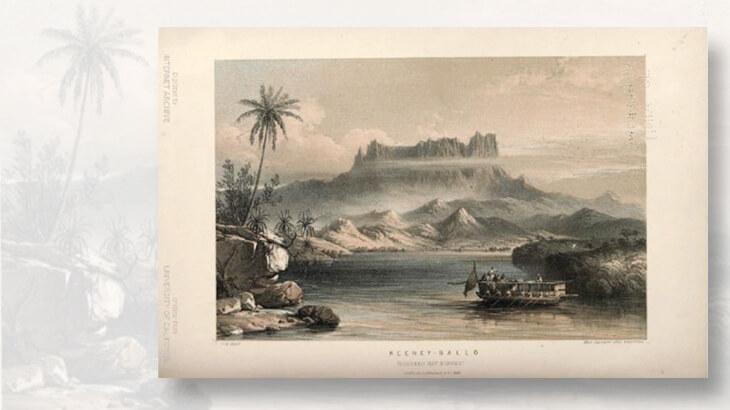 1841-mount-kinabalu-drawing