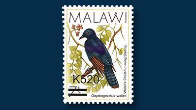 2016-malawi-bird-stamps