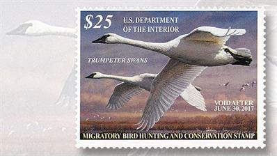 2016-twenty-five-dollar-trumpeter-swans-federal-duck-stamp