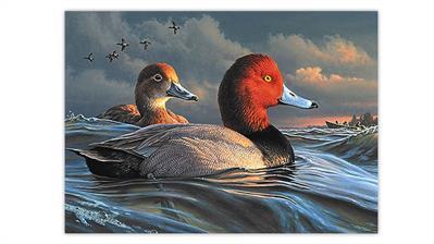 2021-duck-stamp-art-contest-redheads-painting-james-hautman