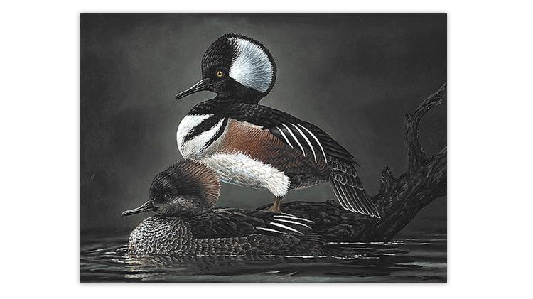 2021-junior-duck-stamp-painting-margaret-mcmullen