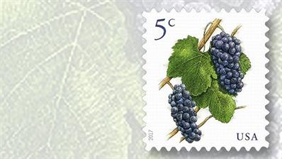 5-cent-grapes-stamp