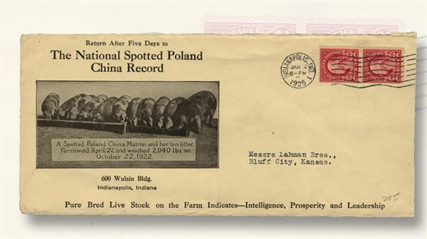 advertising-cover-spotted-poland-china-piglets