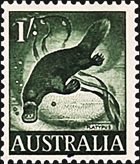 australia-platypus-definitive-stamp-1959