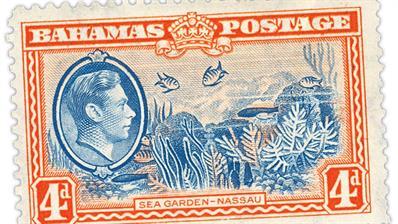 bahamas-sea-garden-talk-preview