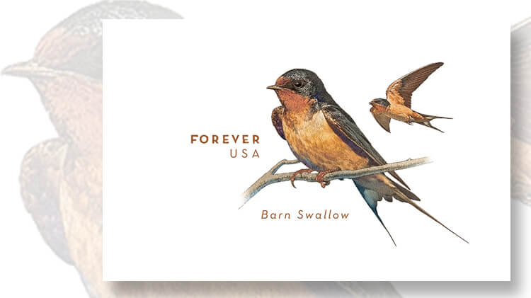 barn-swallow-forever-stamped-envelope