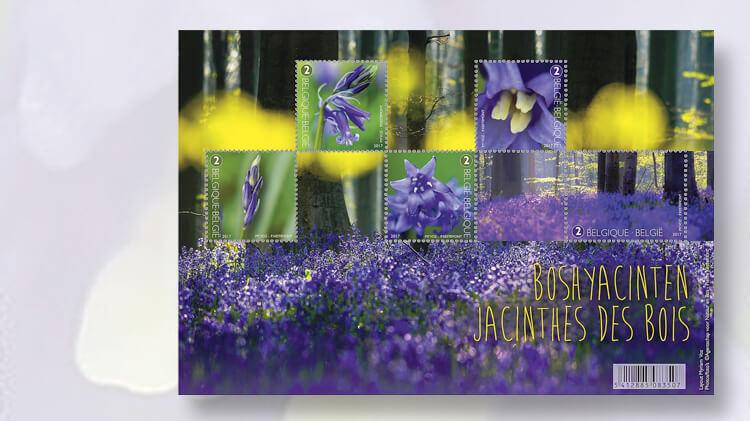belgium-bluebells-stamp-pane