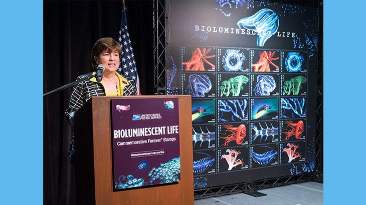 bioluminescent-life-edith-widder