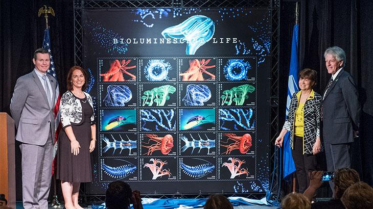 bioluminescent-life-unveiled