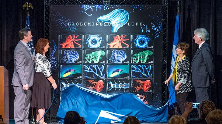 bioluminescent-life-unveiling