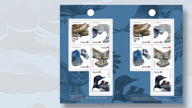 birds-of-canada-booklet