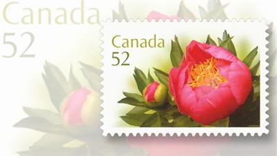canada-2008-peonies-stamp