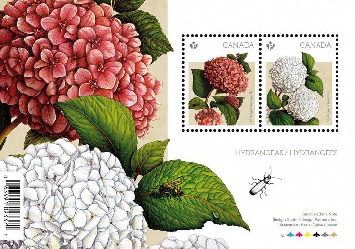 canada-2016-spring-flowers-stamps-hydrangeas-souvenir-sheet