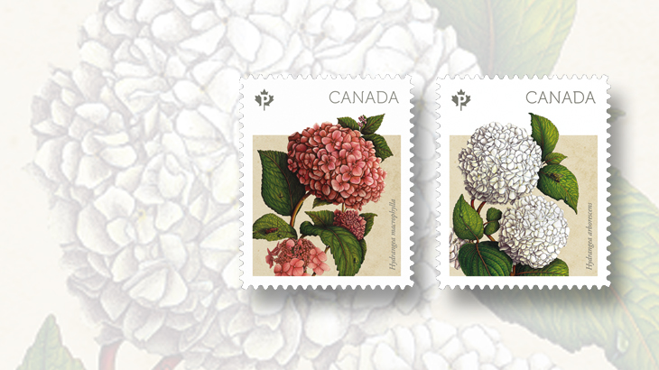 canada-2016-spring-flowers-stamps-hydrangeas