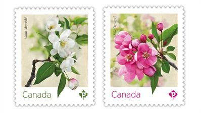canada-2021-crab-apple-blossoms-stamps