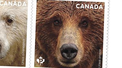 canada-bears-stamps-preview