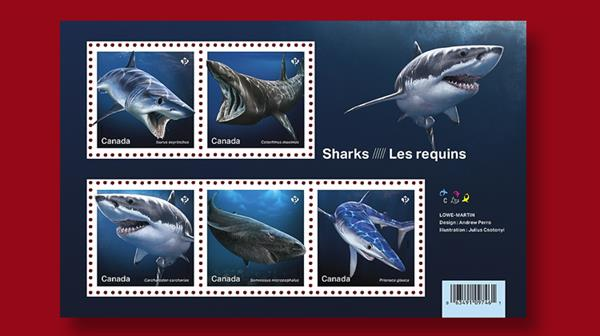 canada-sharks-stamp-sheet