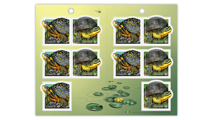 canada-turtles-souvenir-sheet