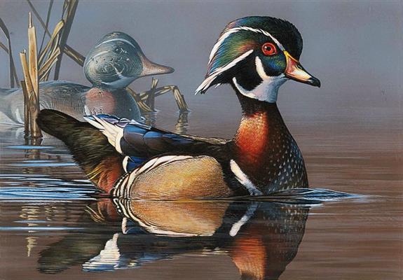 duck-stamp-art