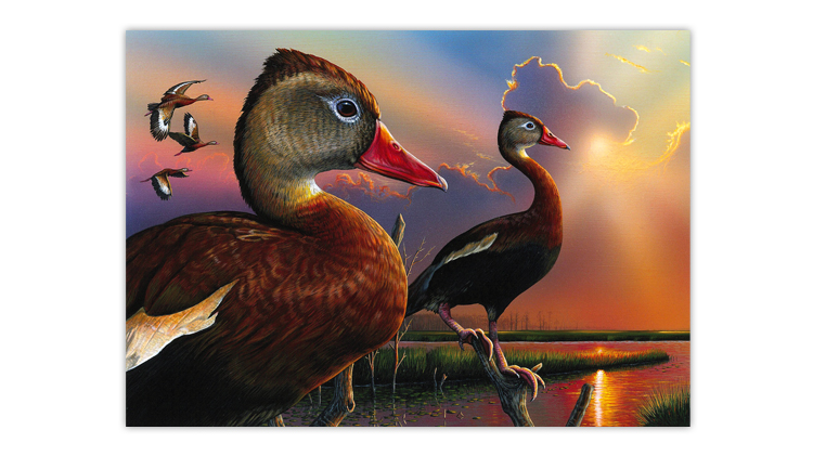 2020 Federal Us Christmas Stamps LeRoy's painting wins federal contest, whistling ducks on 2020