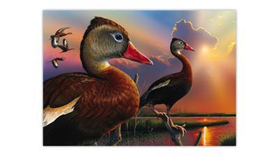 eddie-leroy-whistling-ducks-painting-2020-federal-duck-stamp