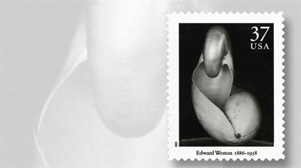 edward-weston-masters-of-photography