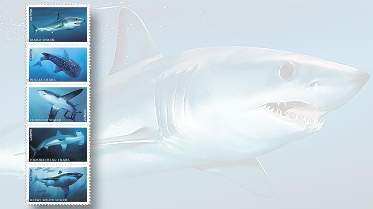 five-sharks-forever-stamps