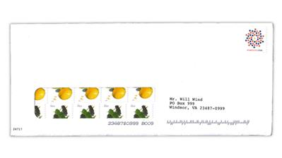 fundraising-mailing-united-states-fruits-coil-stamps