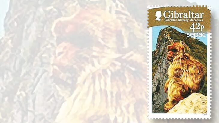 gibraltar-barbary-macaque-stamp