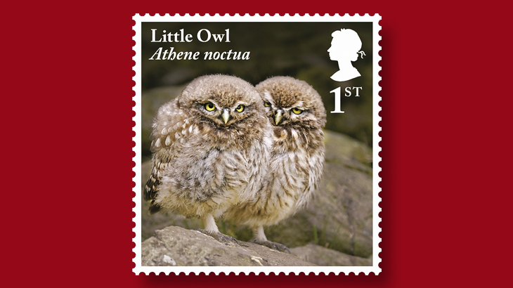 great-britain-juvenile-little-owls-stamp