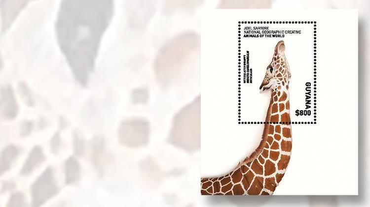 guyana-giraffe-souvenir-sheet