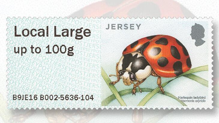 jersey-14-spot-ladybird-stamp
