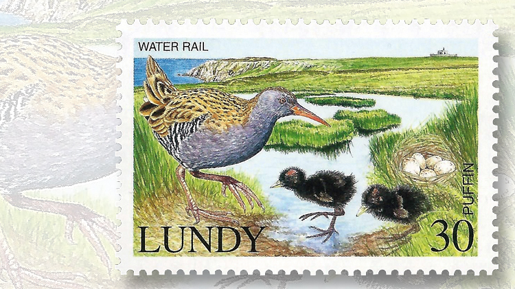 lundy-water-rail-chicks-stamp