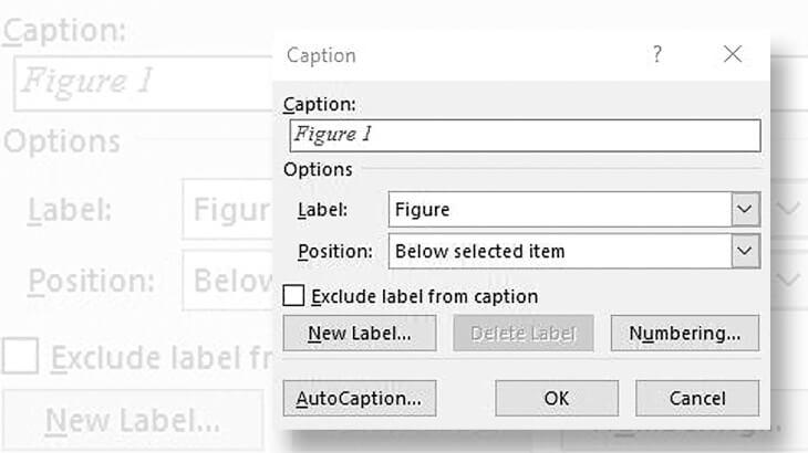 microsoft-word-stamp-albums-dialog-box-captions