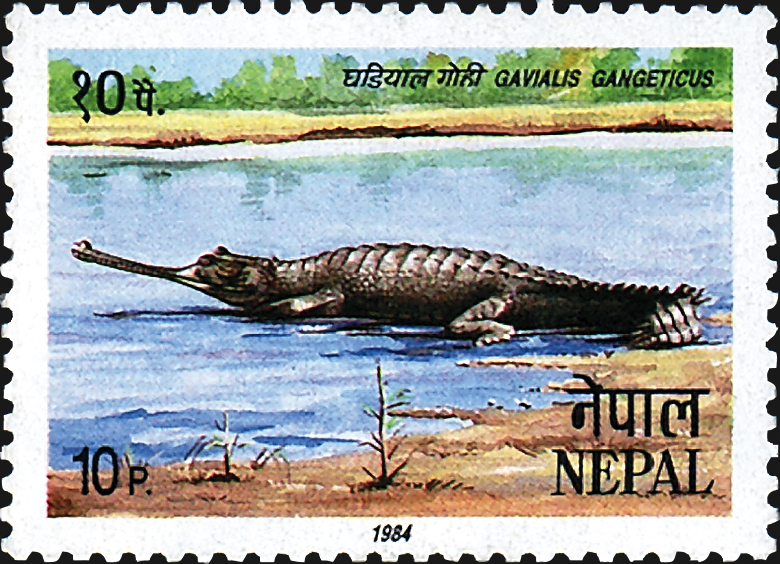nepal-crocodile-stamp-1984