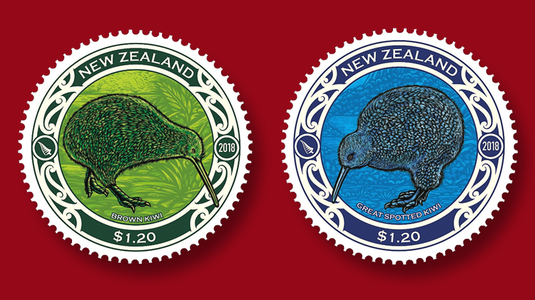 nz-brown-great-spotted-kiwi