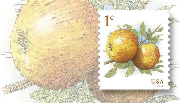 one-cent-usps-apples-definitive-stamp