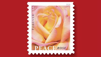 peace-rose-stamp-ceremony