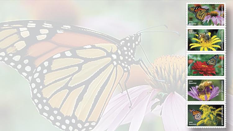 protect-pollinators-2017-butterfly-honeybee