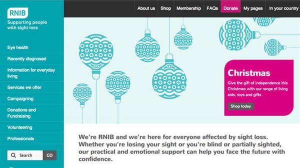 rnib-website-screenshot