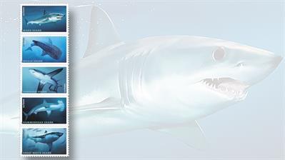 sharks-stamp-set-five