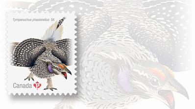 sharp-tailed-grouse-canada-stamp