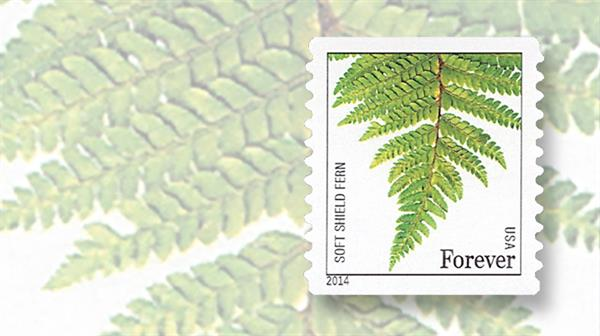 stamp-market-tips-united-states-nondenominated-ferns-forever-coil-stamps