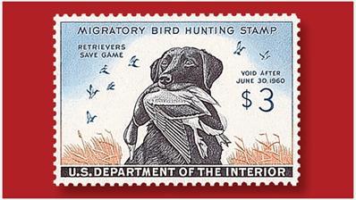 three-cent-labrador-retriever-drake-federal-duck-stamp