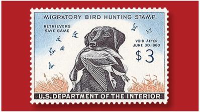 three-cent-labrador-retriever-drake-federal-duck-stamp