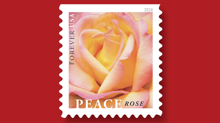 united-states-2018-peace-rose-stamp