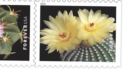 united-states-2019-cactus-flowers-stamp-preview
