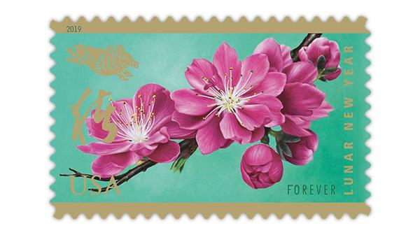 United States 2019 Lunar New Year of the Boar stamp