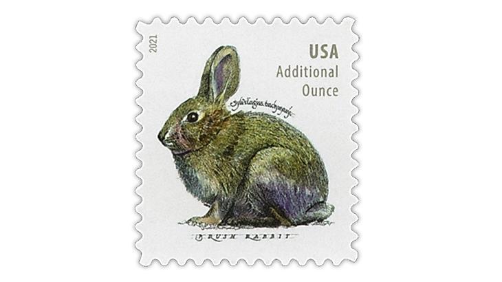 united-states-2020-brush-rabbit-additional-ounce-stamp