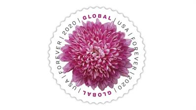 united-states-2020-chrysanthemum-global-forever-stamp